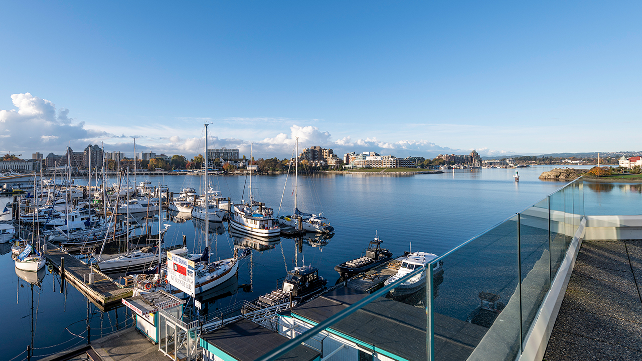 Harbour - Victoria Regent Hotel, Victoria